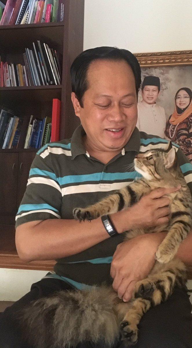 Ahmad B Maslan On Twitter Sesekali Bersama Buntat Kucing Yg Ada Di Rumah Ada 4 Ekor Semuanya Memelihara Kucing Suatu Yg Perlu Kesabaran Kebersihan Mereka Penting Https T Co V3omvtiebs