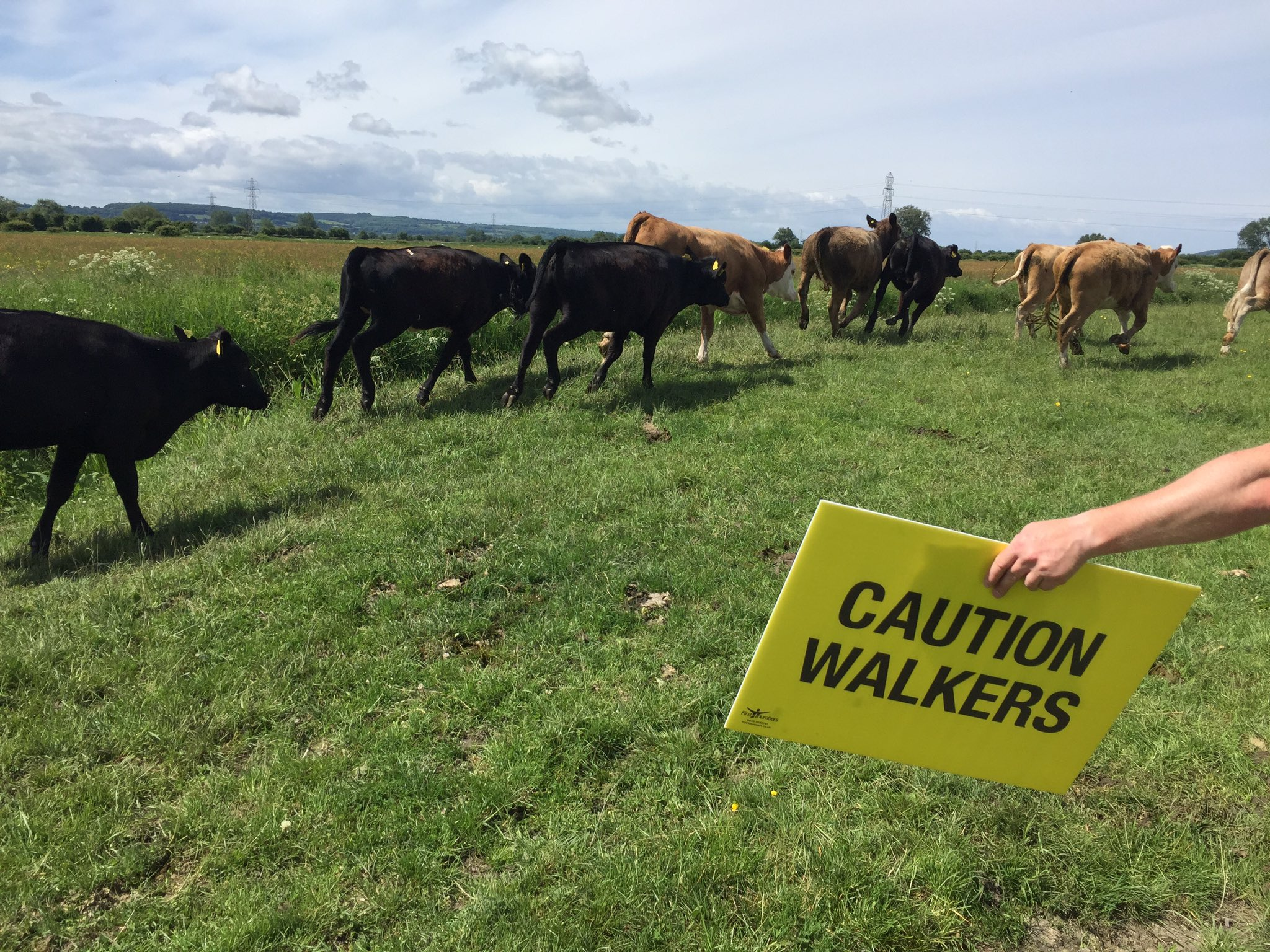 CAUTION  WALKERS (And cows 🐮)  Track Jeff LIVE as he conquers the West Country countryside on Day 2 #JeffsMarch 👇  https://t.co/83tp1CJHcI https://t.co/OLwmkpBH6N