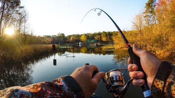 караоке спортивная рыбалка