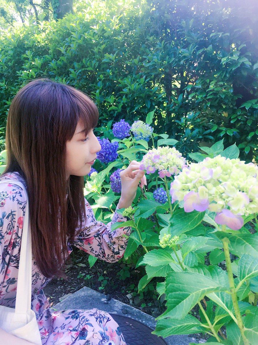 紫陽花とまみちゃんねる