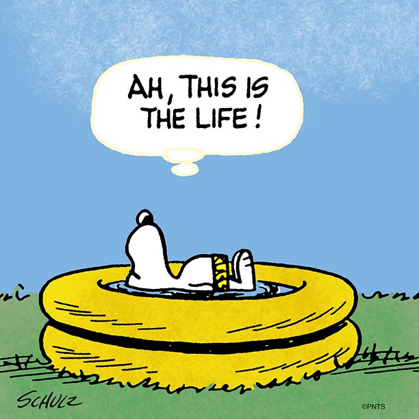 Peanuts snoopy twitter - Woodstock swimming pool opening hours ...