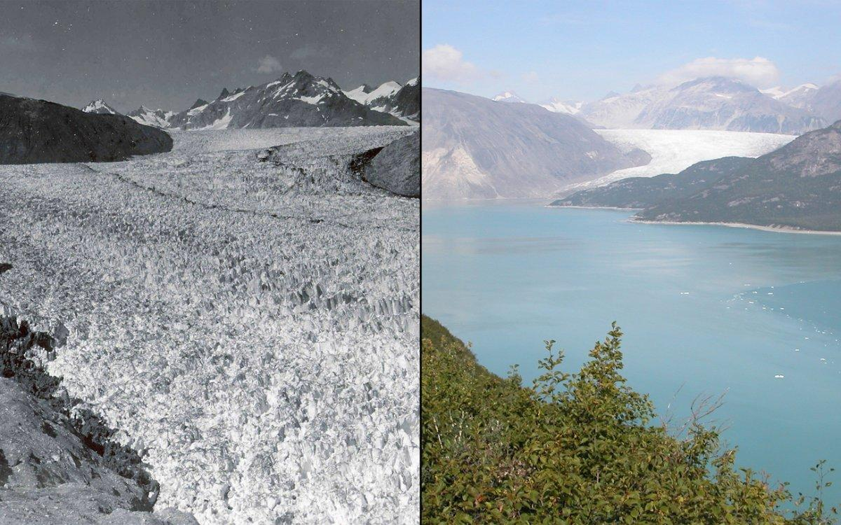 #Climate mythbusting fact: Studies show clearly that #globalwarming is melting most glaciers.  http:// crwd.fr/2s9782I  &nbsp;  <br>http://pic.twitter.com/w0yBkEeLNq