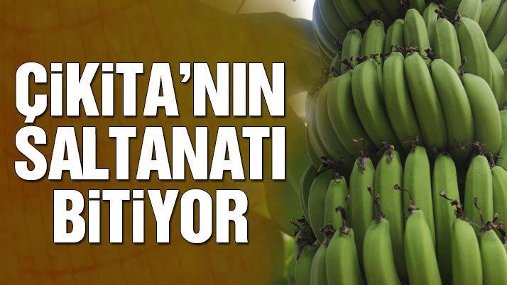 Sözcü On Twitter Türkiyede Yerli Muz üretimi Ilk Defa 306 Bin