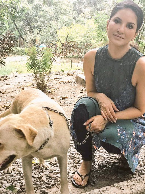 1 pic. First day in Jim Corbett shooting and here is my new friend Bella 😍she is so sweet. Day 1 of 30