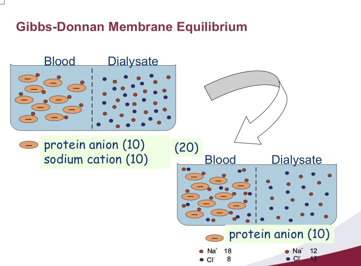 how the gibbs donnan equilibrium conditions and diffusion through a semipermeable membrane are invol Ionic bases of cellular potentials the semipermeable membrane  membrane in order to satisfy the pen and the gibbs-donnan equilibrium.