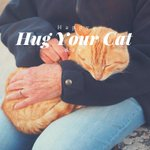 Happy Hug Your Cat Day! #PetHealth #HugYourCat