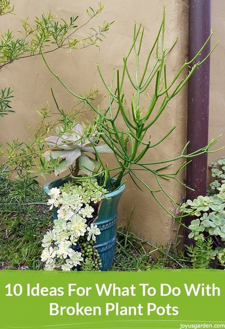 10 Ideas For What To Do With Broken Plant Pots -