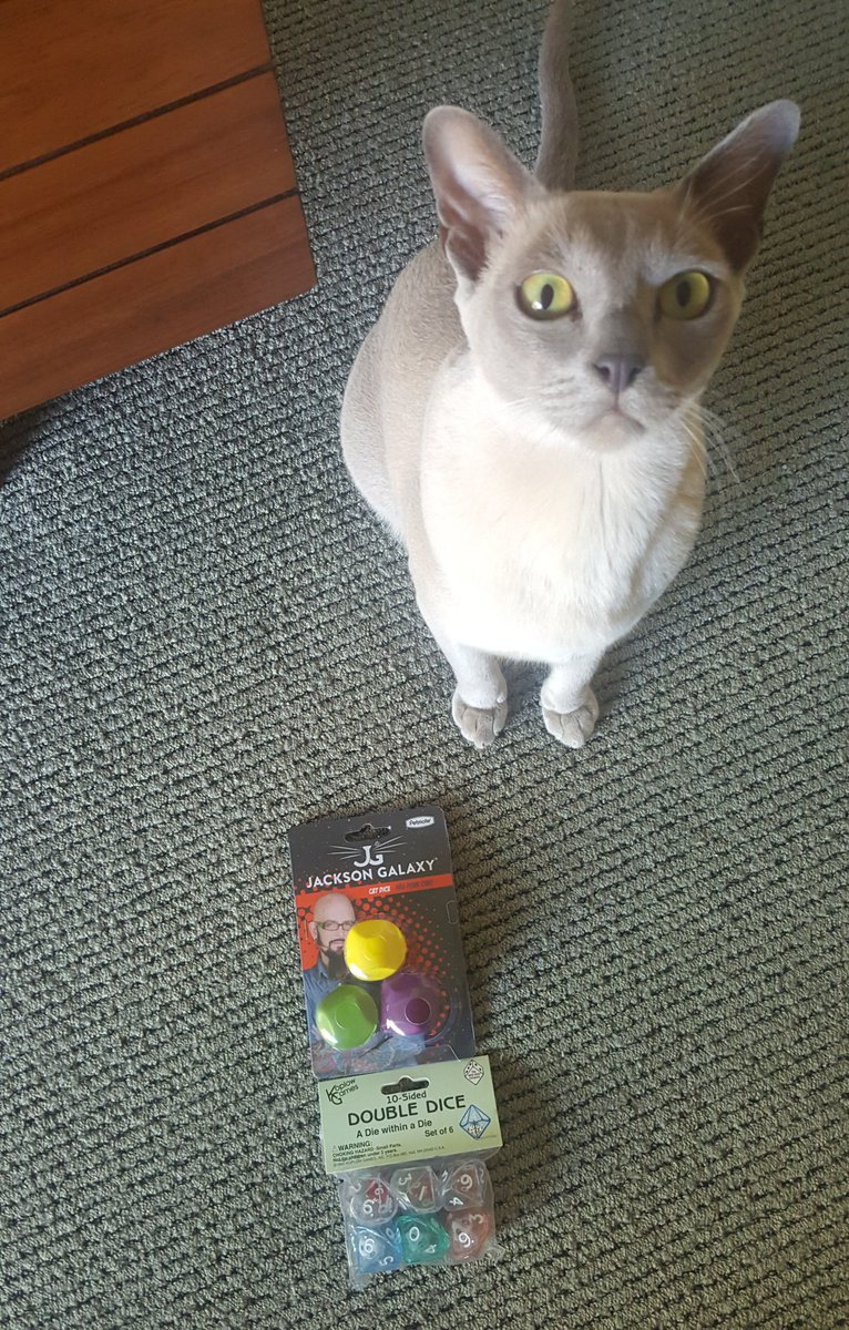 """Vsauce on Twitter """"My cat became a dice collector like me today"""