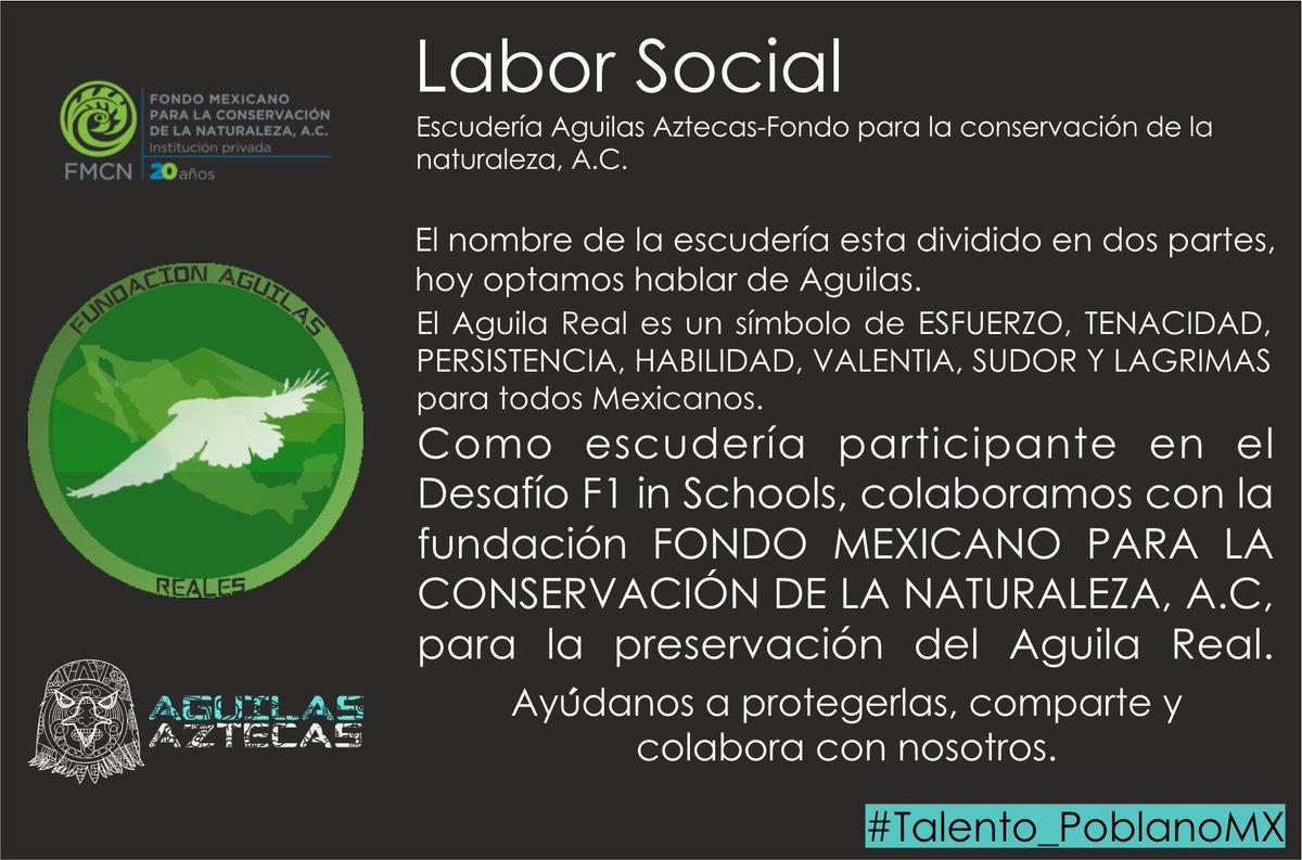 Águilas aztecas on twitter