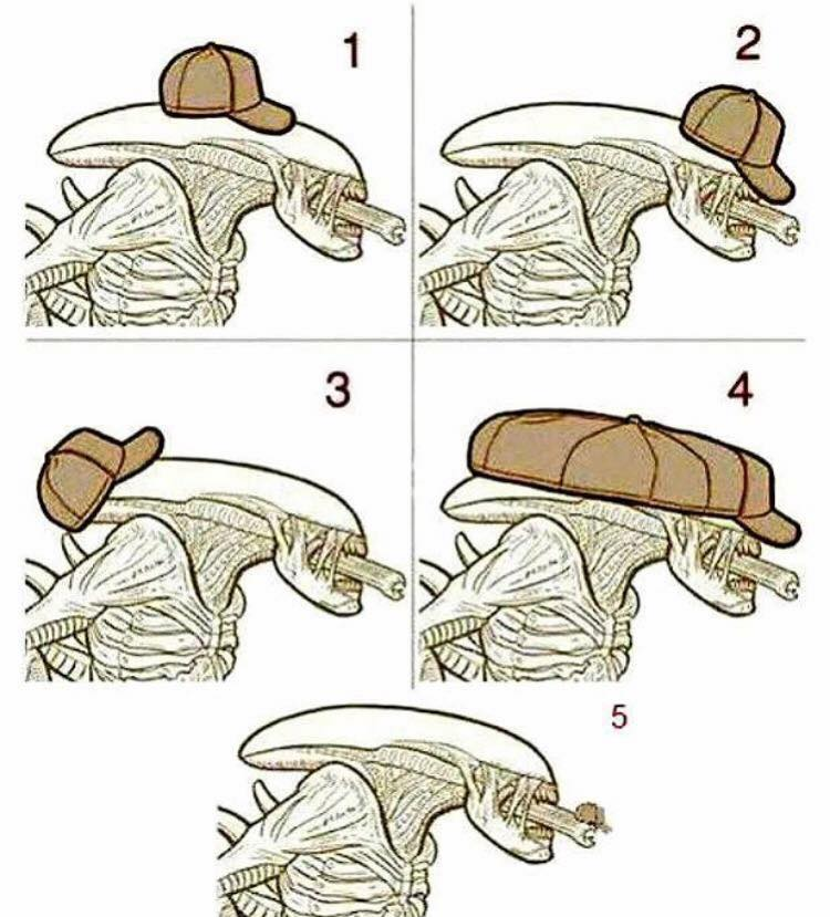How would a Xenomorph wear a hat?