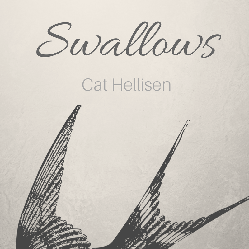 swallows title