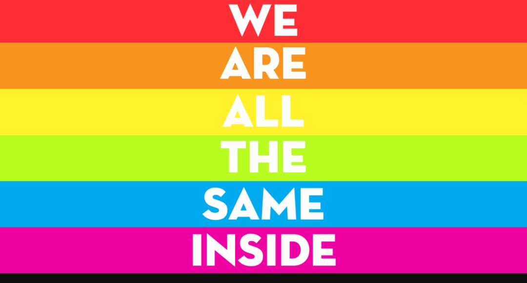 Pdf the lesbian, gay, bisexual and transgender community online