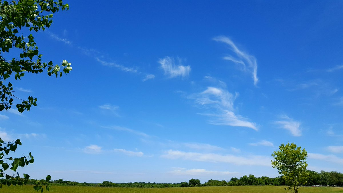 @CloudAppSoc  Perfectly beautiful #ruralskies in #CorcoranMN today