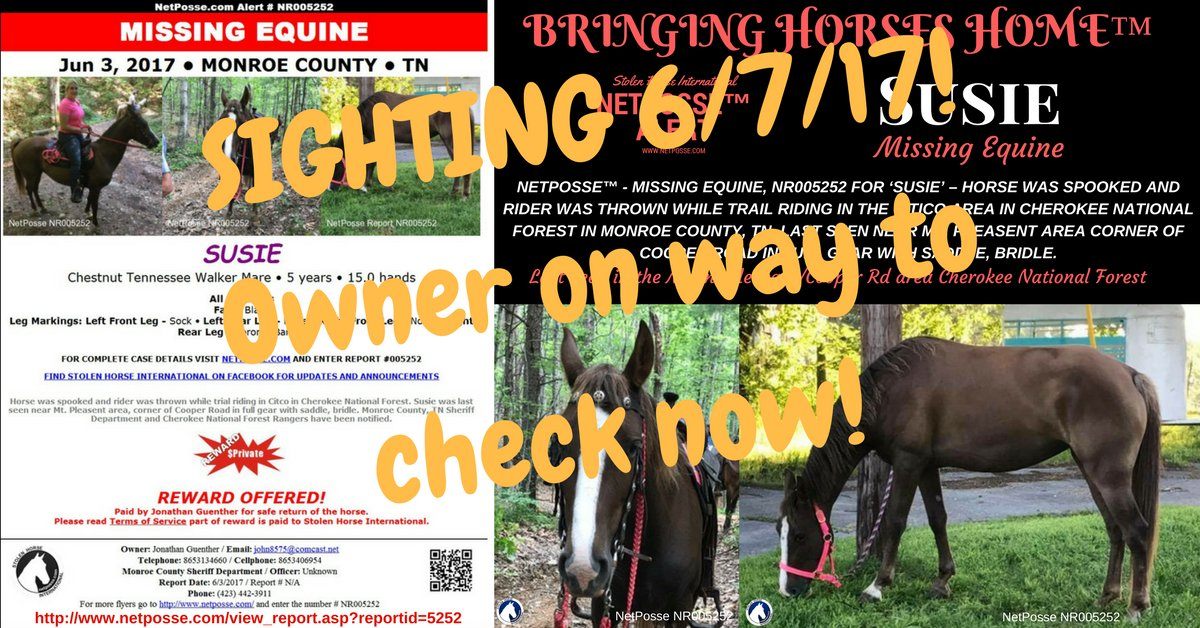 THERE HAS BEEN A SIGHTING OF SUSIE! OWNER ON THE WAY TO CHECK NOW!!! #HelpFindSusie #BringHerHome #NetPosse #Missing #Lost #Horse #Tennessee <br>http://pic.twitter.com/h4JH965eEp