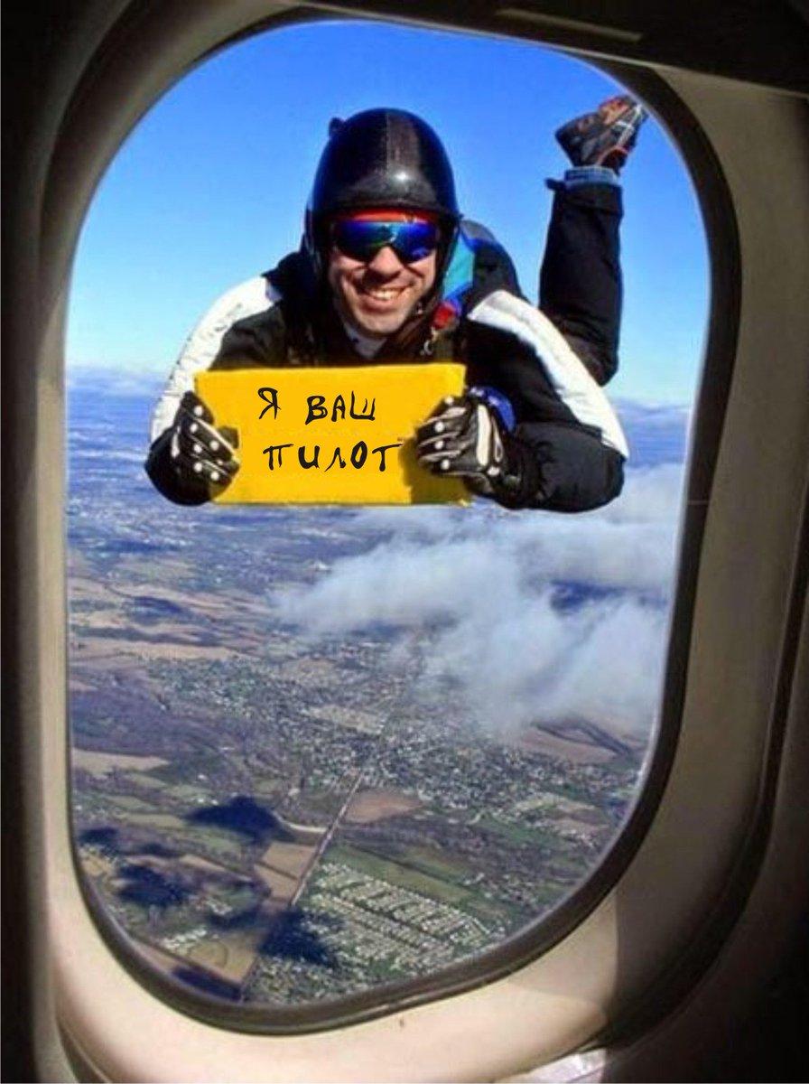 отличного полета картинки с юмором котом делает