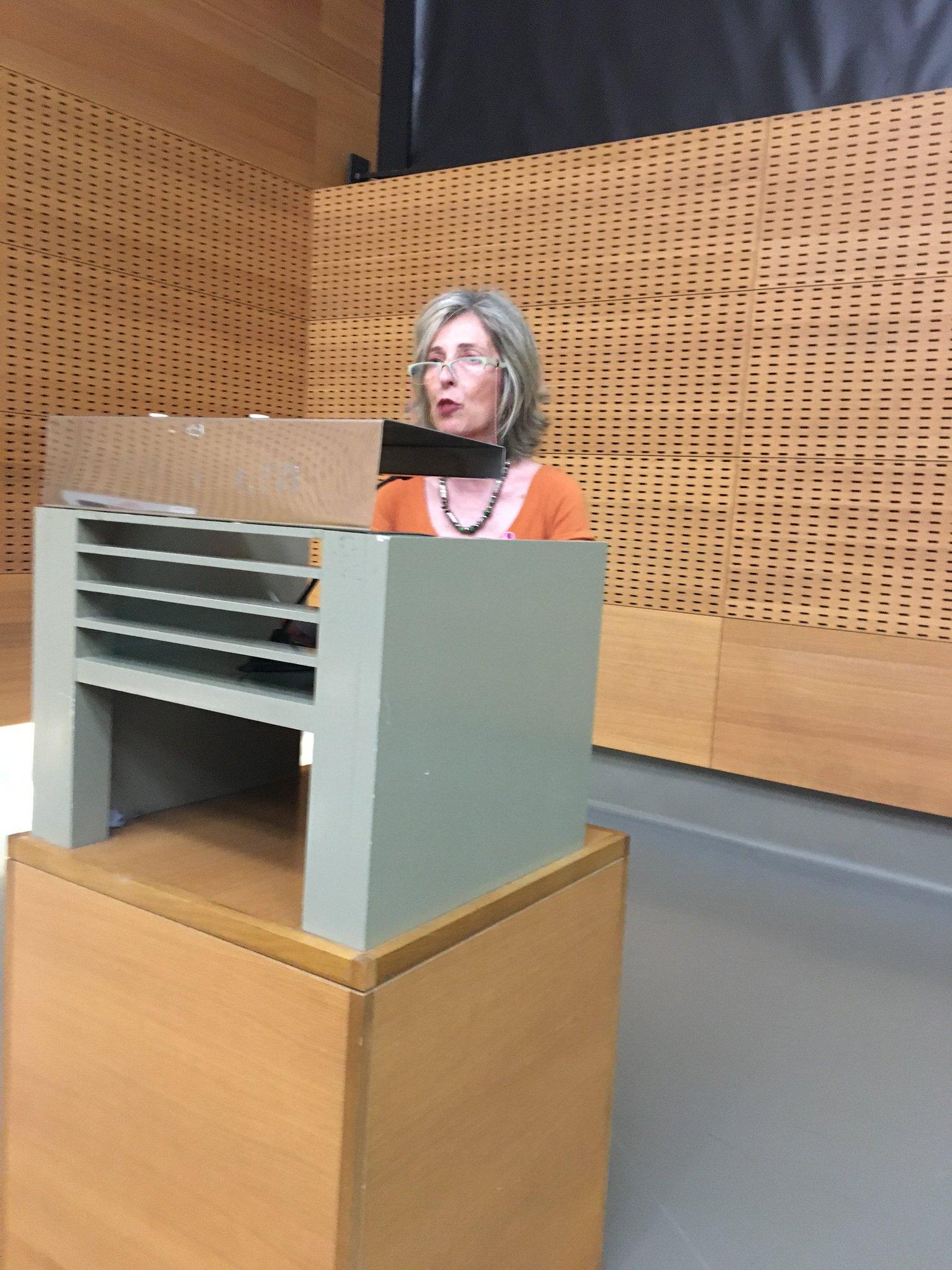 Ana Sarasa, presidenta de Saray, dando comienzo a la #JornadaSaray https://t.co/5B2oCvX5RX