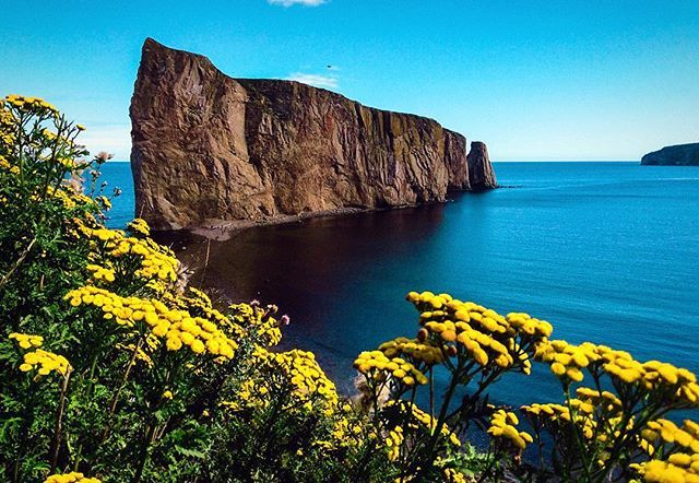 A view of the wide Atlantic Ocean from Percé in #Gaspesie #Quebec.     Praise #WorldOceansDay!<br>http://pic.twitter.com/VlM8SjKcIR