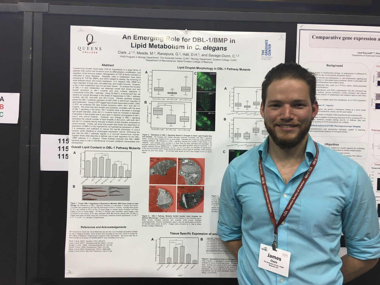 Come talk to James about signaling and fat metabolism Poster 1154 #worm17 https://t.co/P6MSCDWzdb