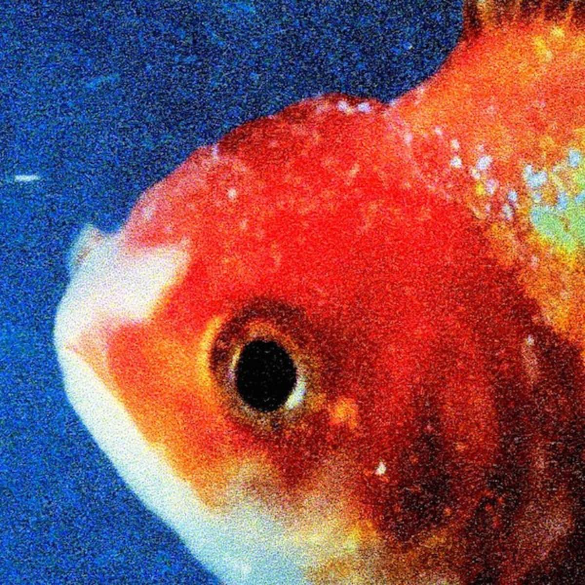 Stream @VinceStaples' 'Big Fish Theory' album right now.  https://t.co...