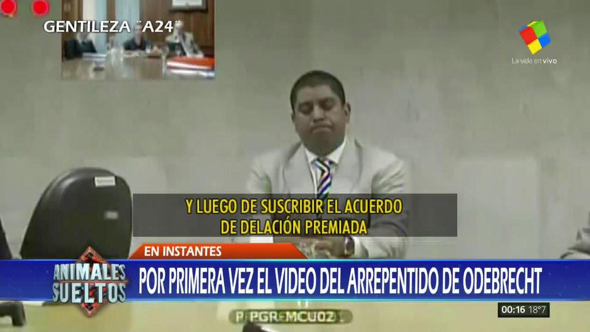 #AnimalesSueltos Caso Odebrecht: el arrepentido Leonardo Meirelles apu...
