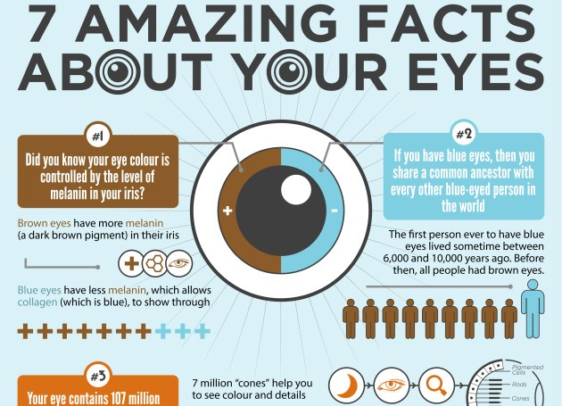 7 Amazing Facts About Your #Eyes Infographic   http:// ahealthblog.com/0sr1  &nbsp;  <br>http://pic.twitter.com/2xUVBWcowB