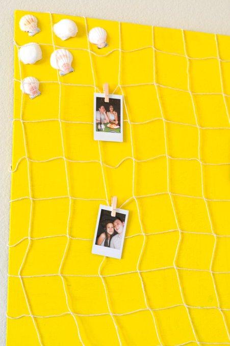 Sea Shell Polaroid Board