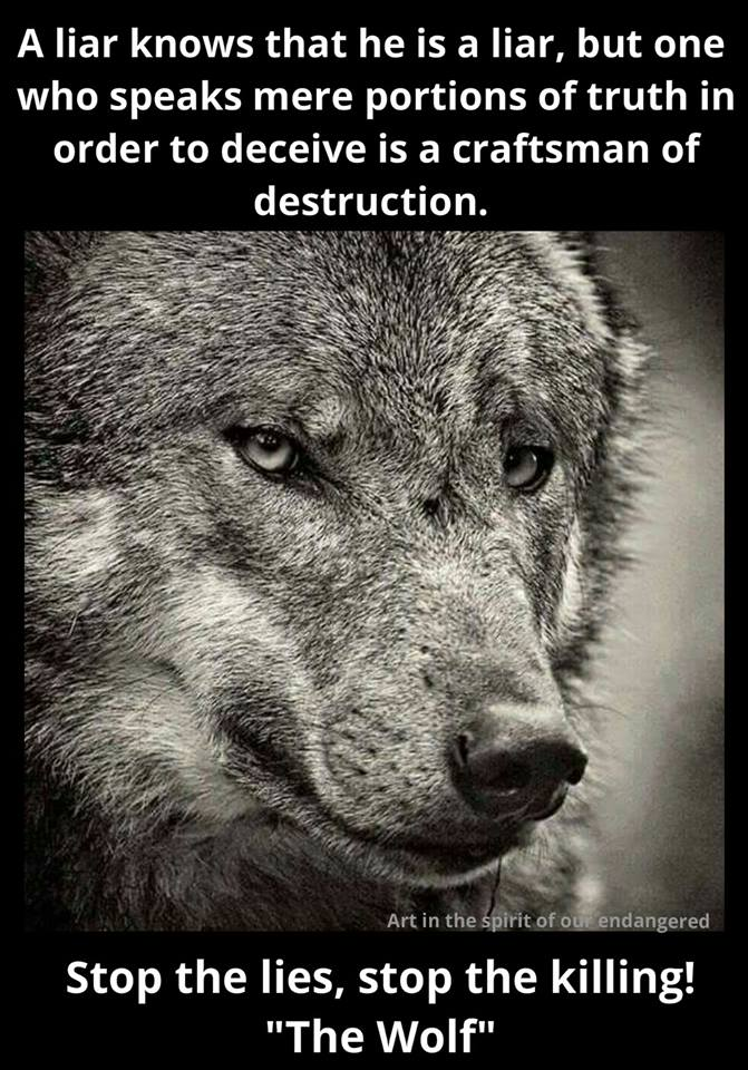 The world is sorrowful with no imagination #ProtectWolves #Wolves  #YellowstoneWolves #StandForWolves  #Keepwolveslisted #Yellowstone #WOLF<br>http://pic.twitter.com/38p0RHL28S