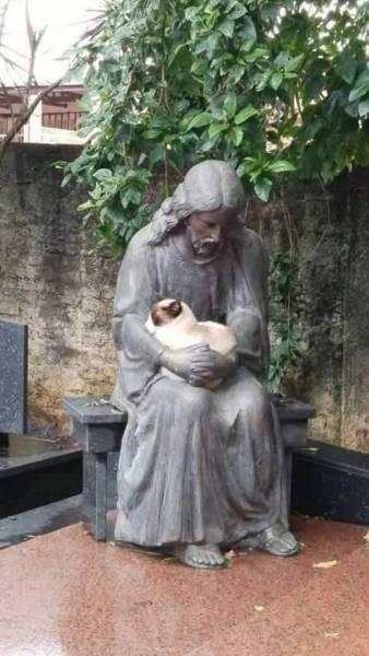 銅像に心があったら、さぞうれしかろうと思う。ネコについては社内から「くぼみがあればそこに入る生き物」と言われました