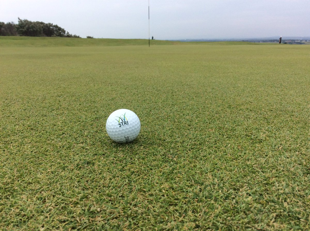 Superb authentic playing surfaces @GullaneGolfClub complemented by wonderfully diverse &amp; playable rough. #golf #links #ecology <br>http://pic.twitter.com/SMHrZveCvO