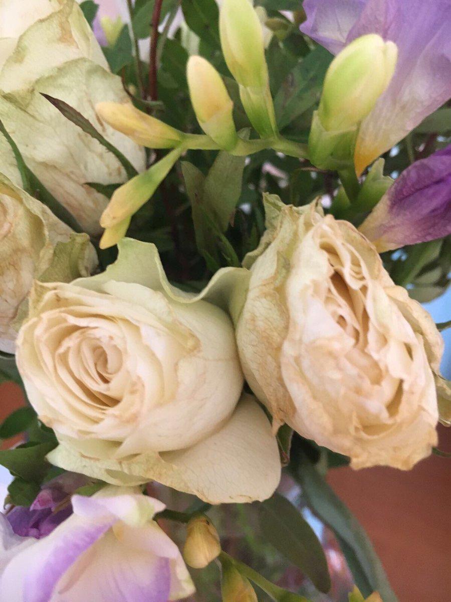 Katrina Philippou On Twitter Not Happy Efloristflowers Ordered