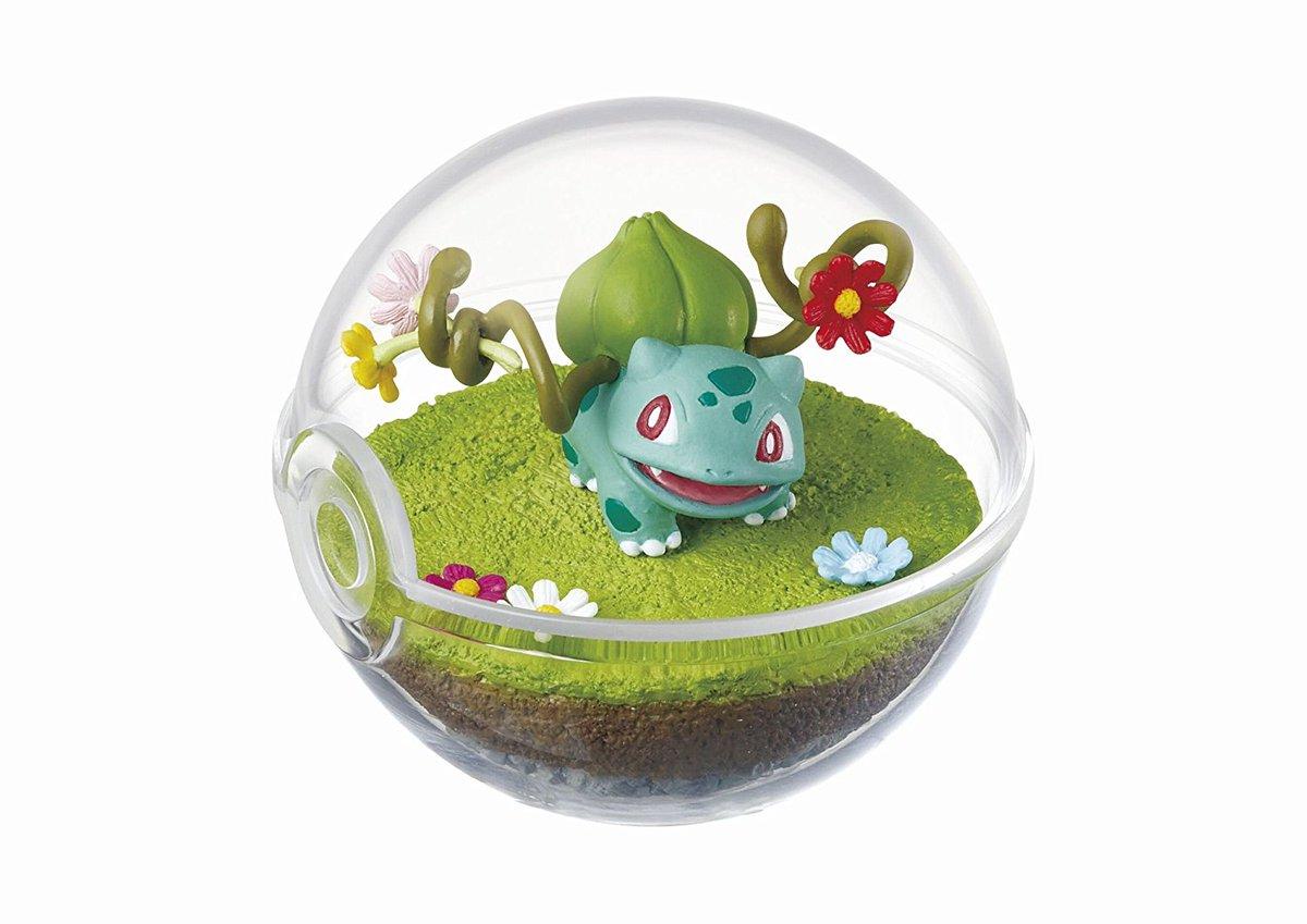 Pokeshopper Com On Twitter Pokeshopper Pictures Hq Images Of Pokemon Terrarium Bulbasaur Dragonair Eevee Figurines Https T Co Zsxii6fjg6