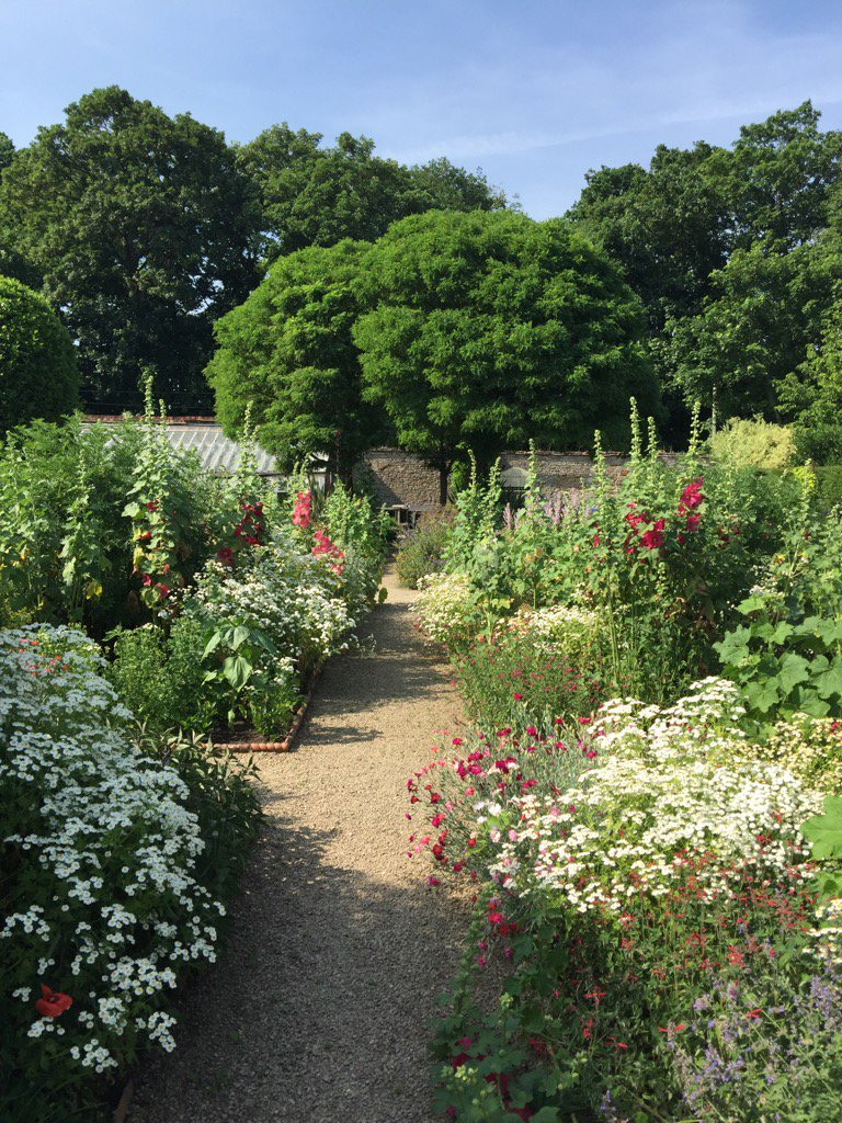 Shimmering heat in the #walled #garden @LoseleyPark today - enjoy it while it lasts!