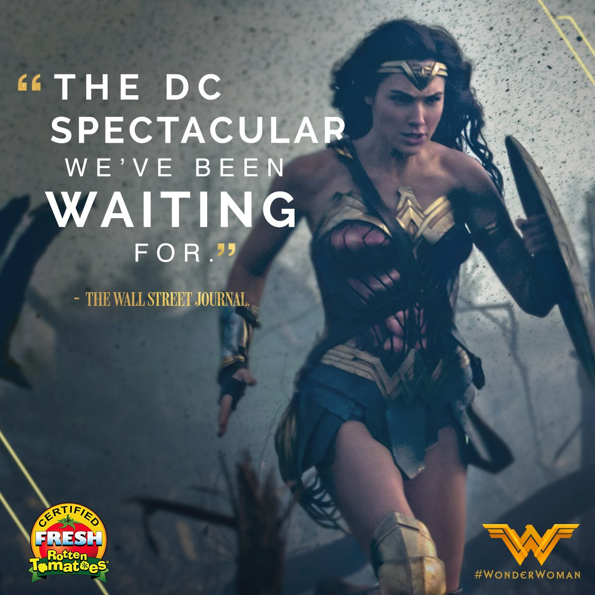 #WonderWoman delivers on every level. 💥⚔️ See it in theaters now. Get...