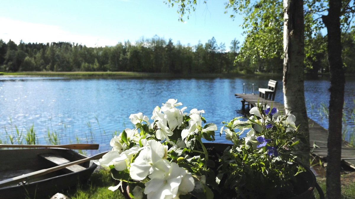 MT @OlariMerja: Food for eye &amp; soul #Finnish style at the summer cottage. <br>http://pic.twitter.com/6gBL7Myecm #Finland #Finland100