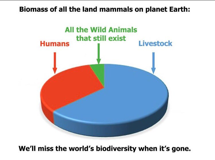 #resources #biosphere limited thus human #population crowds out #wildlife thru #Habitat destruction plus $ gained #poaching #WednesdayWisdom<br>http://pic.twitter.com/yTa7rM1yr0