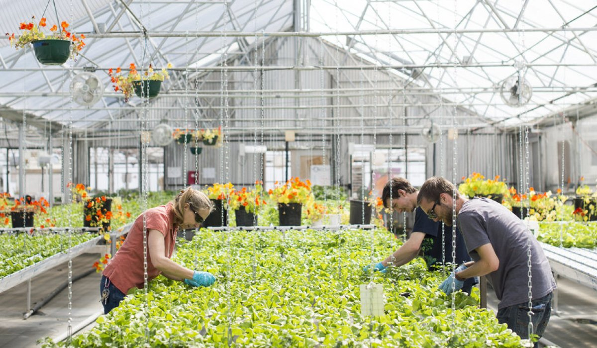 A1. For us, urban gardening means leveraging the resources we have to produce fresh food for our local community #insidedenver https://t.co/gINAKLWwut