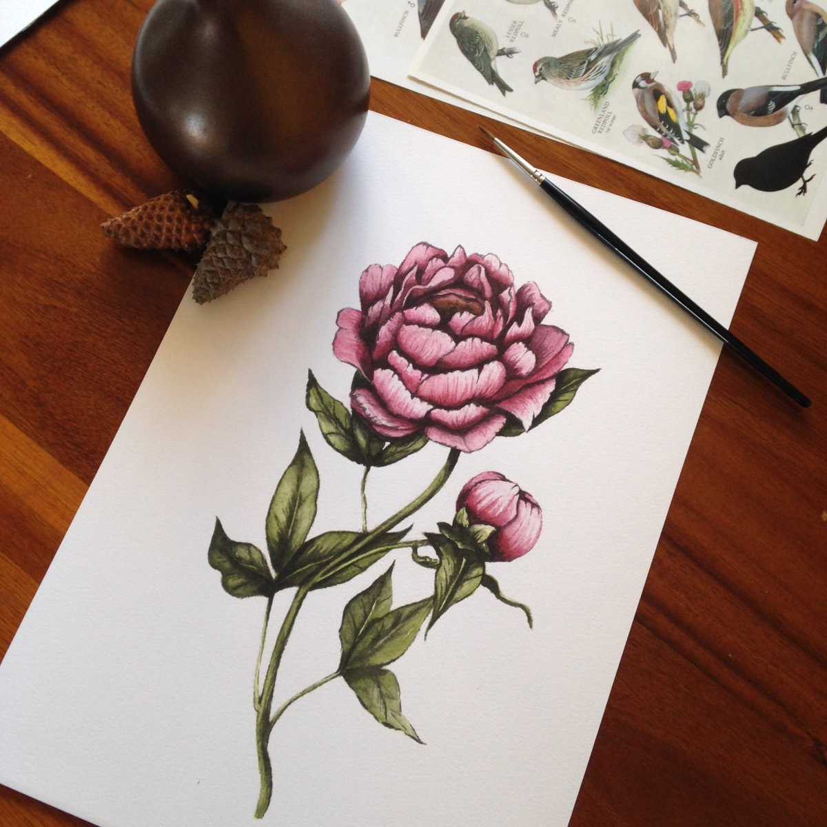 Vintage style peony prints    http:// ow.ly/gGHX30cLY52  &nbsp;    #handmadehour #etsychaching #etsyseller #etsy #art #peony<br>http://pic.twitter.com/9oR3gqDjfk