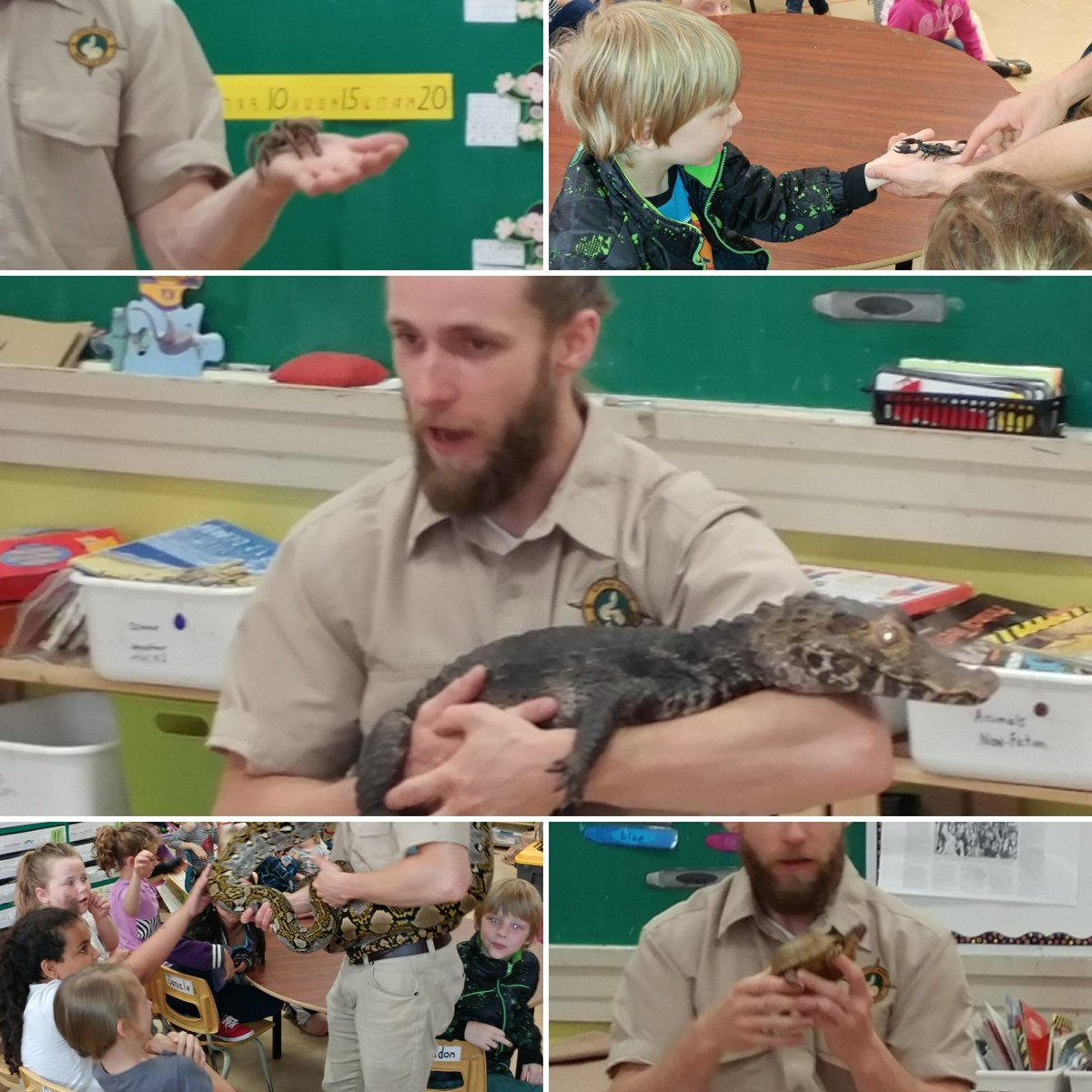 Thanks Ray&#39;s Reptiles for an AMAZING learning experience ! #reptiles #arachnids #amphibians #ohmy<br>http://pic.twitter.com/Ieth4zP1UW