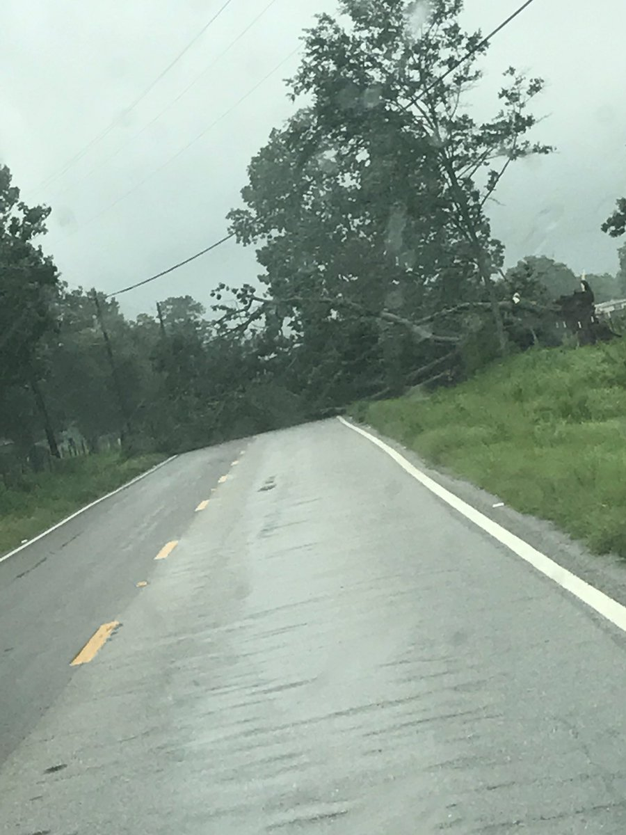 @MobileALTraffic tree down in road Dawes lane near three notch rd https://t.co/btt3uWc42X