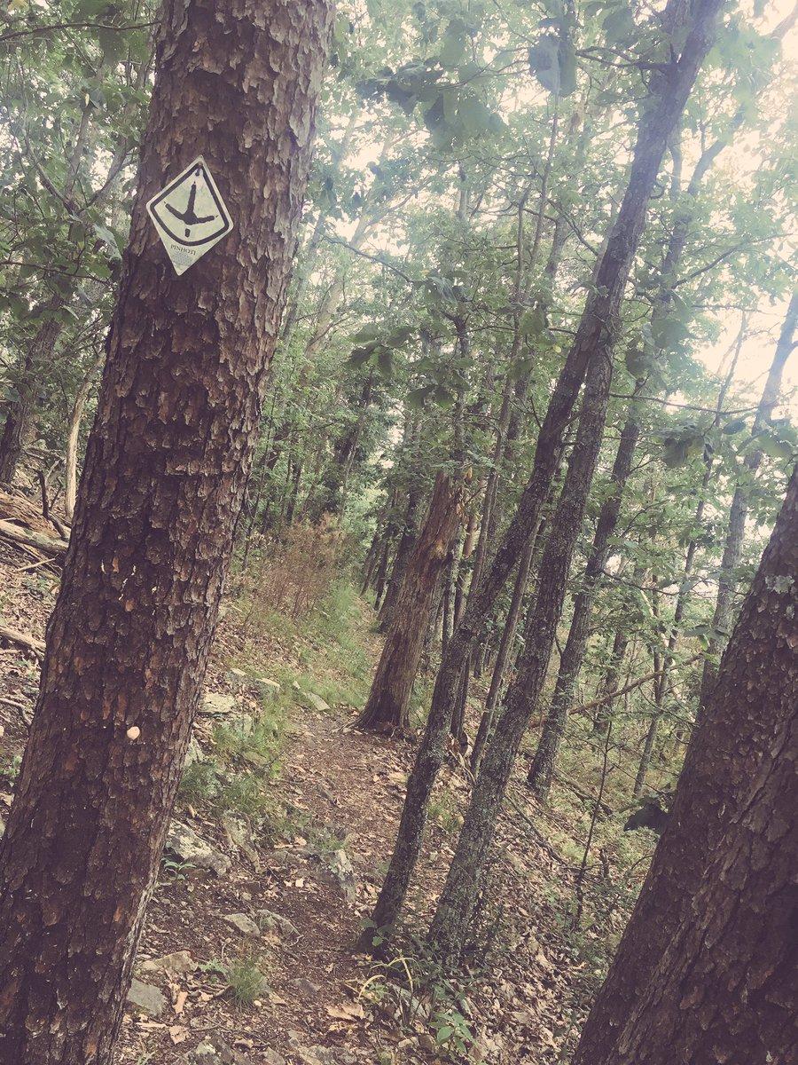 I&#39;m still learning my way around on the Pinhoti Trail. But I&#39;m sure enjoying it. #trail #trailrunning #training #ultratraining #stumpjump50k<br>http://pic.twitter.com/4mh3C676UN