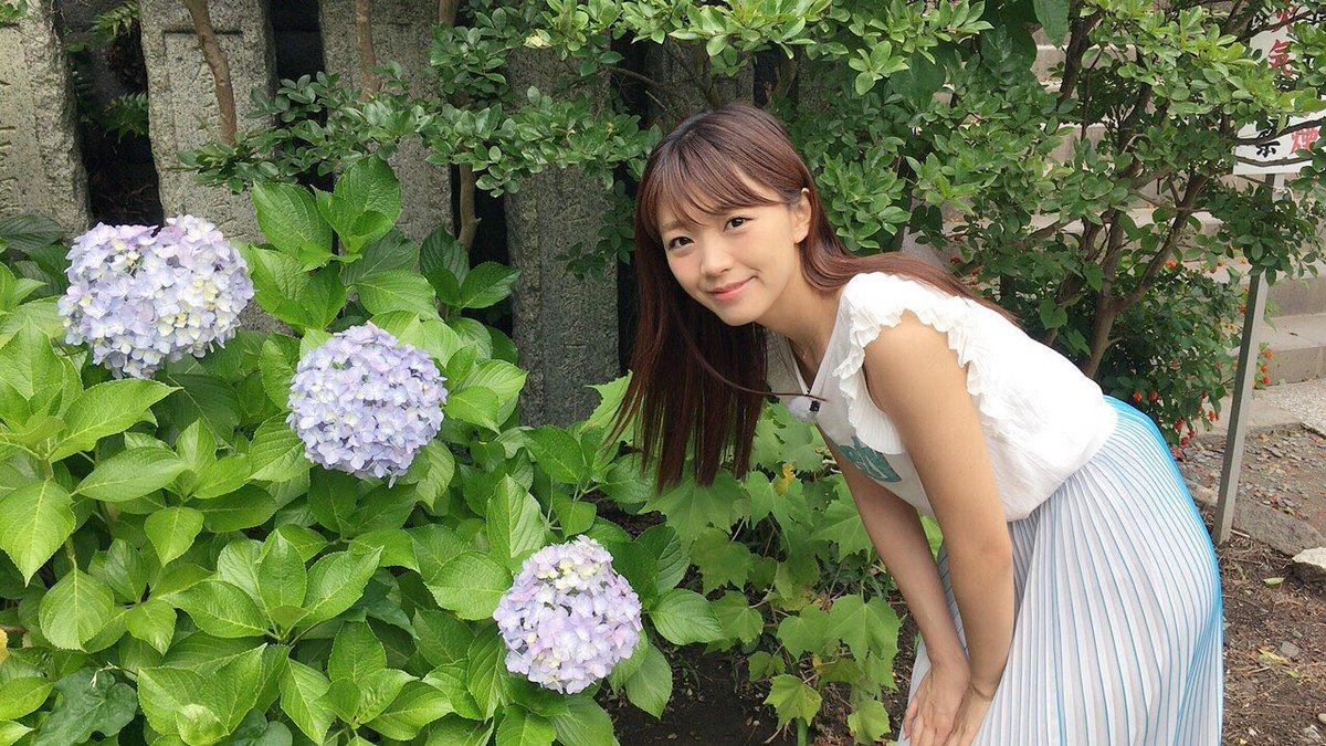 ロケday。お天気良くてよかった♪紫陽花がキレイに咲いていました♪紫陽花好き 6月のお花だからかな♪