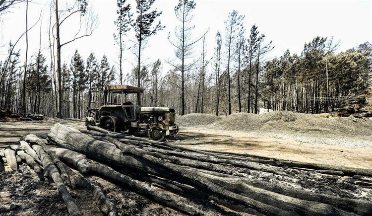 #Sociedade Apoios à floresta vão para regiões com poucos fogos https://t.co/dYLFyUxD9G Em https://t.co/MDmhqgtnSp