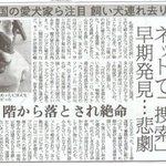 札幌で起きた悲劇です。全国の飼い主様、愛しい家族を守れるのはあなただけです。「少しだけだから・・・」…