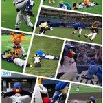 フリーダムすぎる!プロ野球の球団マスコットたちの行動が面白い!
