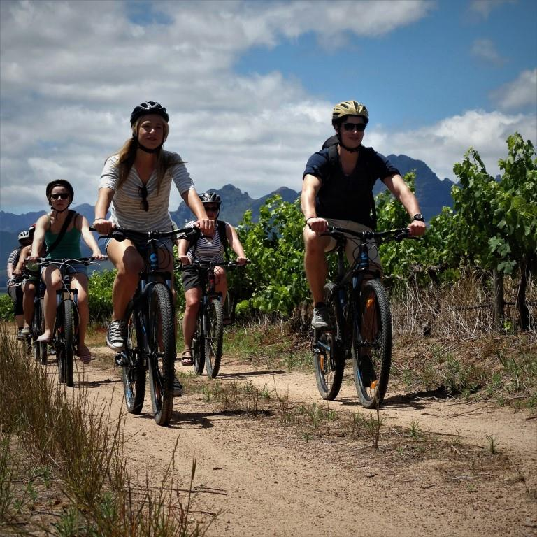 BikesnWines photo