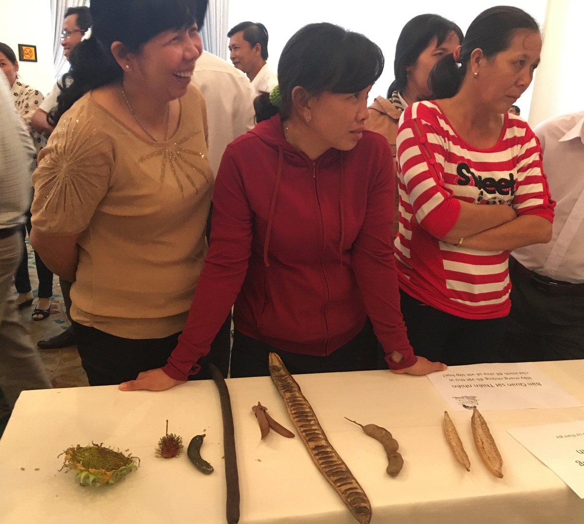 1* school teachers have fun with participatory science activities. @OUCRU_Vietnam #Publicengagement. <br>http://pic.twitter.com/Vt1XA1ZN9b