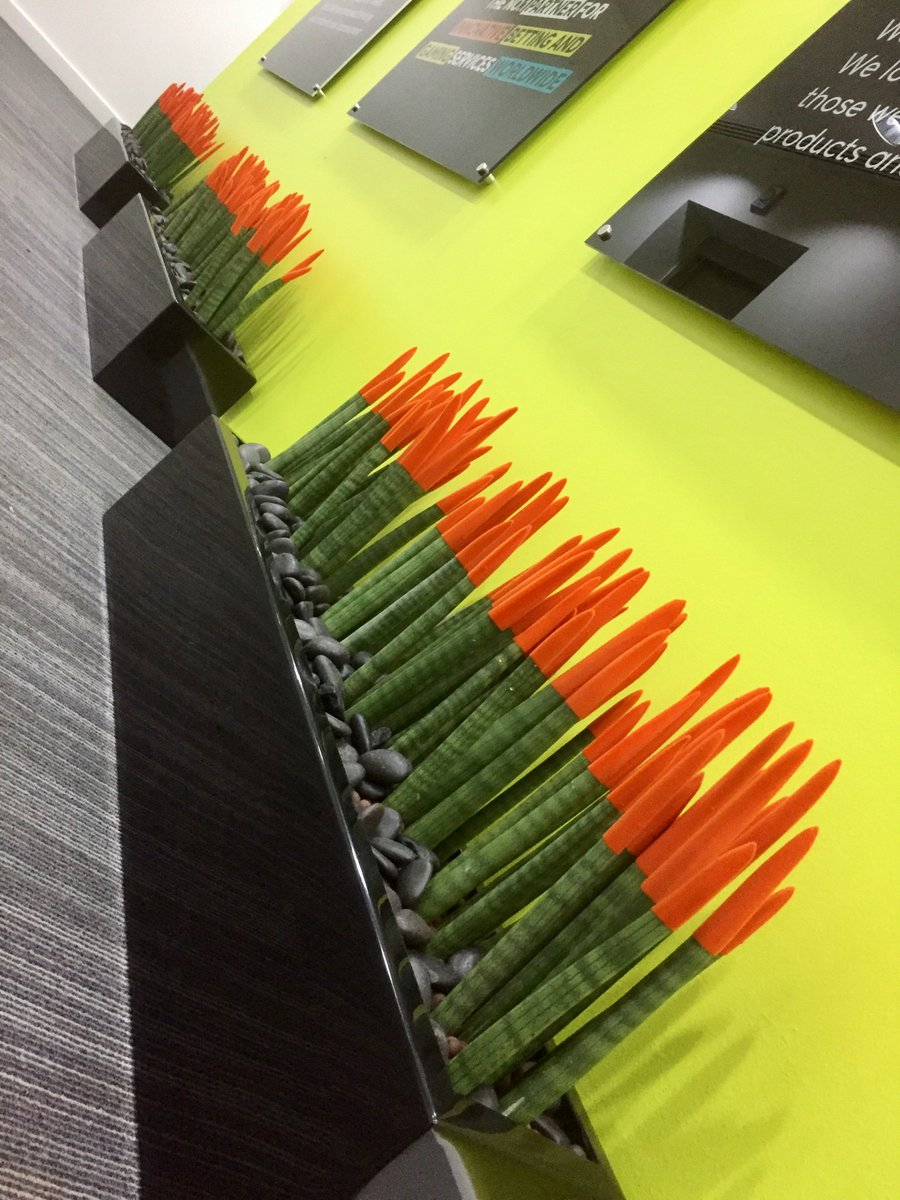 This client knows how to wake up their staff in the morning! This is one zingy install #orange #plants #officedesign #bright #inleafinstall<br>http://pic.twitter.com/DrBgtNMnp5