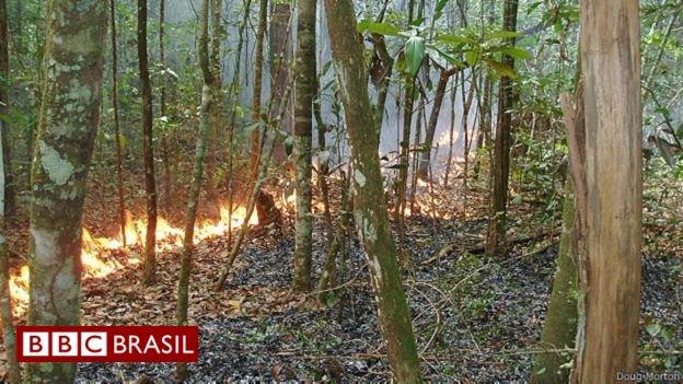 Insatisfação da Noruega com alto desmatamento na Amazônia cria incômodo em visita de Temer https://t.co/W9aDXiQ9lh