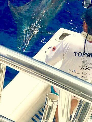 Kona, HI - Topshape released a 650 lbs. Blue Marlin.