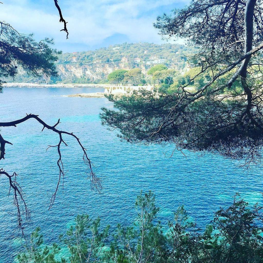 We enjoy the #summer !  #cotedazurfrance #stjeancapferrat #beach #sea…  http:// ift.tt/2sOUwhP  &nbsp;    : @RivieraCityG<br>http://pic.twitter.com/AGaaxChypW